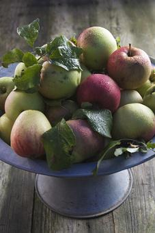 apples,bowl