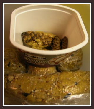 container of suet ball variations