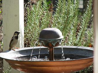 bird,copper-fountain