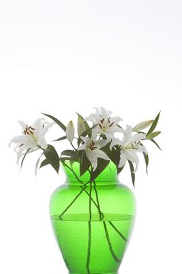 vase,green