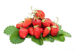 organic vegetable gardening and strawberry fruits